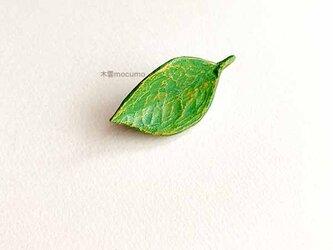 クスノキの 葉っぱブローチ の画像
