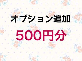【500円】オプション追加の画像