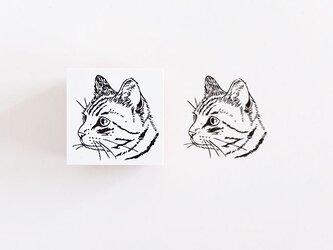 ラバースタンプ トラ猫の画像