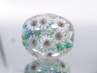 時計草のとんぼ玉(ガラス玉)の画像