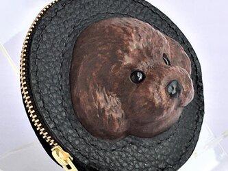 トイプードルの本革コインケース(チョコ)の画像