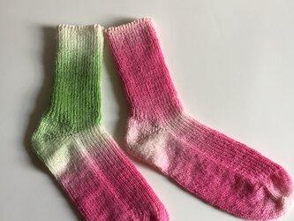手編み靴下【ザウバー・ボール 2079】の画像