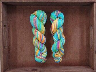 インダスからの贈り物(オリジナル段染め糸)㊺1本の画像