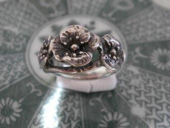 芥子のリング(受注制作)の画像