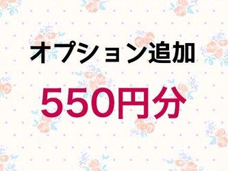 【550円】オプション追加の画像