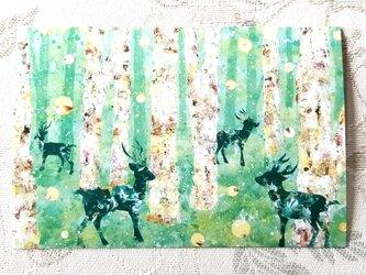 北欧風森のポストカード3枚セットの画像