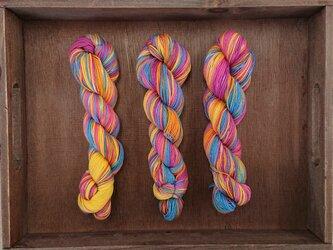インダスからの贈り物(オリジナルの段染め糸)(53)1本の画像