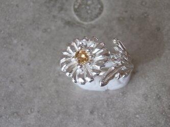 一輪の花の指輪の画像