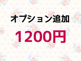 【1200円】オプション追加の画像