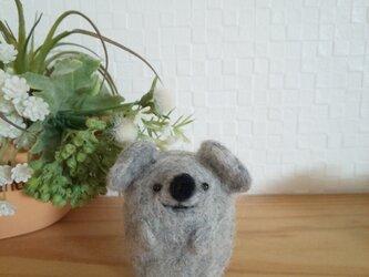 つぶらな瞳のコアラさん 羊毛フェルトの画像