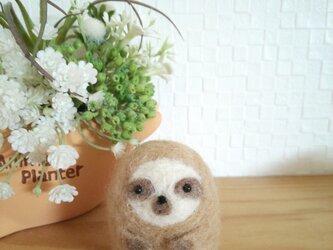 つぶらな瞳ののんびりナマケモノさん 羊毛フェルトの画像