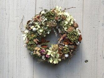 秋冬・大人のドライフラワーリース・淡緑・ジニアの画像