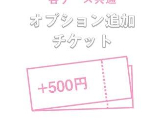 各ケース共通 +500円追加オプションの画像