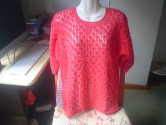 手編みの透かし模様のべすと。の画像