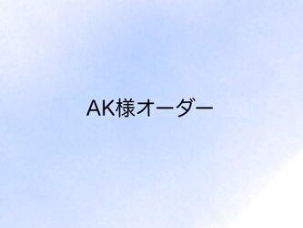 AK様オーダー品*タータンチェックのポーチMサイズの画像