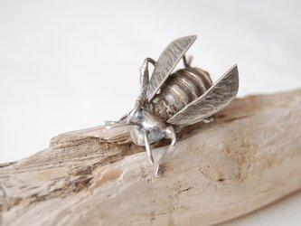 スズメバチのピンバッジ[SILVER950]の画像
