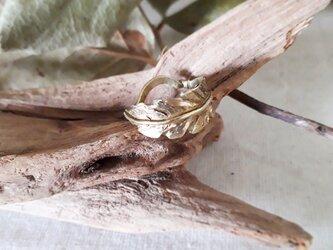 【10号】brass leaf ringの画像
