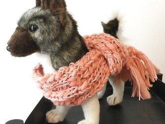 犬用 ウールマフラー 2色 ★ スラブ糸 ウール100% 小型犬用 防寒 犬服 ファッションの画像
