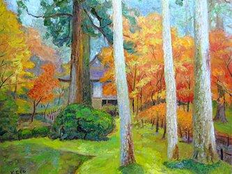 錦の秋の画像