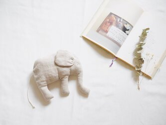 Elephant.の画像