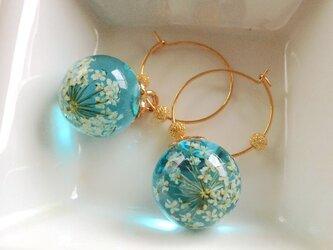 Blue Blooming flowers pierced earringsの画像