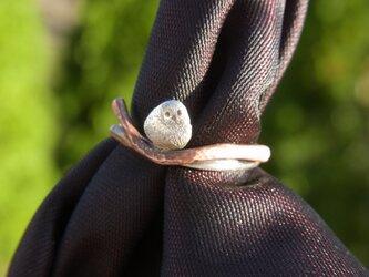シマエナガのリングの画像