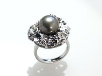タヒチパールリング 11㎜珠の画像