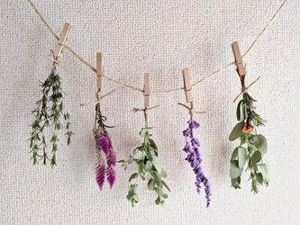 自家栽培ハーブのユーカリとケイトウとセージの小さなフラワーガーランドの画像