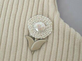 サークル真珠のお花の画像