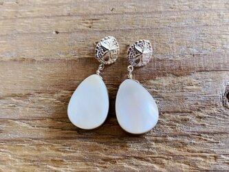 Sand dollar × mothor of pearl earringsの画像