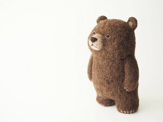 BROWN BEAR (standing)の画像