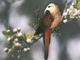 【Hakuna matata】 想いを込めた * 鳥のブローチの画像