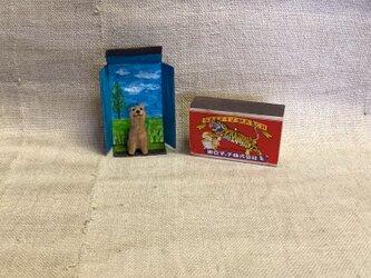 マッチ箱の中の犬の画像
