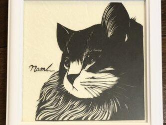 額装済み切り絵作品・猫3の画像