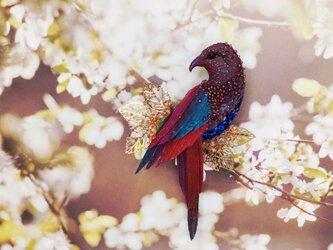 【Noble】気高き信念 * 鳥のブローチの画像