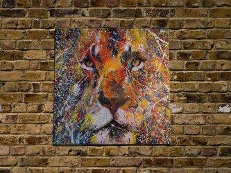 LION (multi color edition)の画像