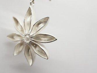 star anis white-up pierceの画像
