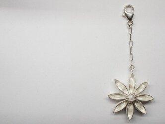 star anis white-up pendantの画像