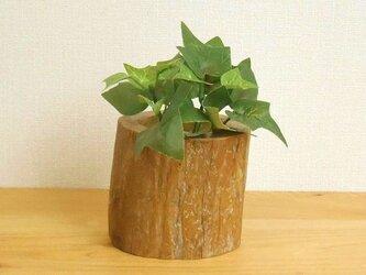 【温泉流木】いろいろ使える丸太のミニ花器ハイドロカルチャー容器002太 流木インテリアの画像