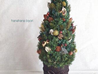 グリーングラデーションプリザーブドリーフと木の実のクリスマスツリー ※ラッピングは別途購入お願いしますの画像