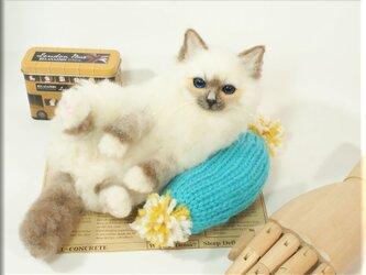 羊毛フェルト 猫 バーマン ねこ ネコ 猫フィギュアの画像