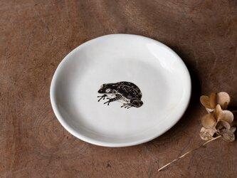 粉引丸皿(モリアオガエル)【クリックポスト198円可】の画像