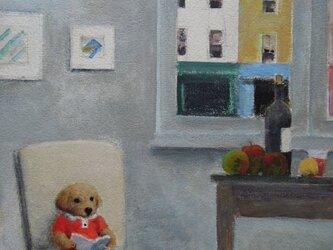 読書・子犬の画像