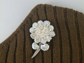 真珠 大輪の花の画像