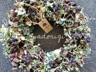 アンティーク紫陽花,富良野ラベンダー,シャリンバイ,チランジア,ユーカリのリースの画像