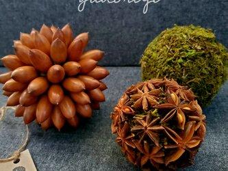 北欧の森…木の実のボールの画像