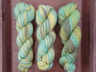 オリジナル段染め毛糸⑪並太 1本の画像