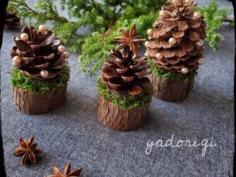 ミニクリスマスツリー3個セットの画像