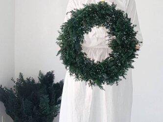 クリスマスリース受注販売品 ☆グリーンリース特大の画像