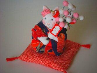 縮緬福猫 初春 その三の画像